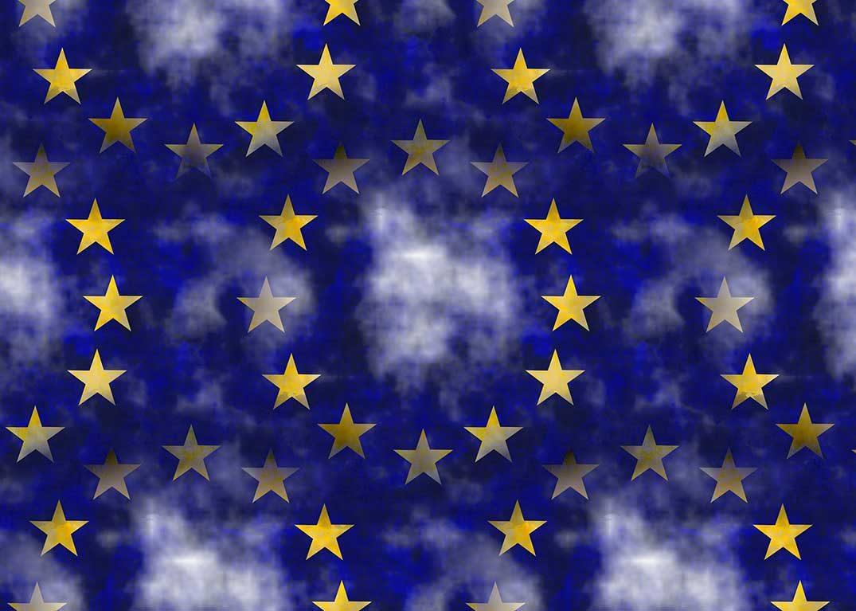 EU digitalizacija
